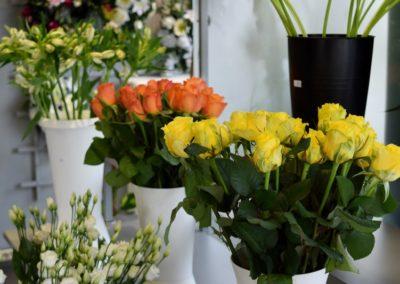 Fleurs moreau_avril2019 (1) (Copier)
