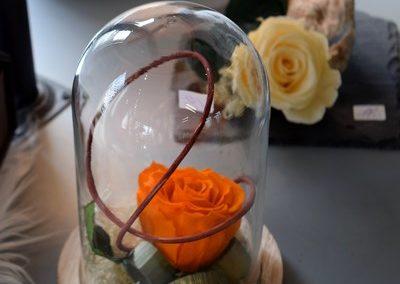 Fleurs moreau_avril2019 (6) (Copier)
